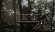 Permalink ke Destiny