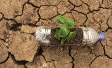 Permalink ke Drought and Recycling